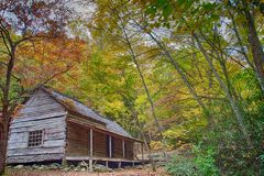 Old log cabin home with fall colors covering the trees royalty free stock image