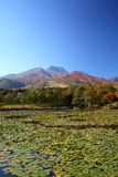 Mountain and lotus pond Stock Photos