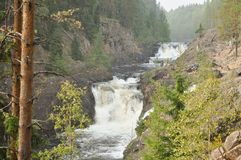Mountain low waterfall with a rapid current. Beautiful mountain low waterfall with a rapid current in Karelia stock photo