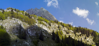 Mountain Maglic in Bosnia & Herzegovina. Panorama of Mountain Maglic in Bosnia & Herzegovina Royalty Free Stock Photos