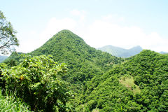 Mountain in Martinique. Royalty Free Stock Photo