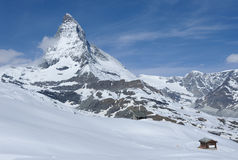 Mountain Matterhorn Royalty Free Stock Images