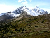 Mountain and Meadow. Snow Caped mountain with rolling meadow Royalty Free Stock Image