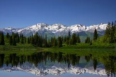 Mountain Meadow Stock Images