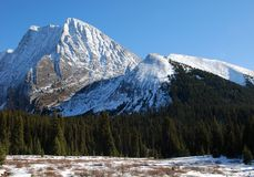 Mountain and meadow Royalty Free Stock Image