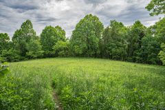 Mountain Meadow. With beautiful sky in the background located in the Blue Ridge Mountains of Virginia, USA Royalty Free Stock Photography