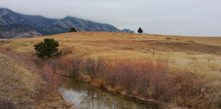 Mountain Meadow with Creek Running Through It Stock Images