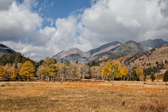 Mountain Meadow in Fall Stock Images