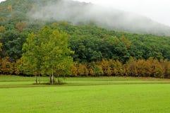 Mountain Meadow - fog in early autumn Royalty Free Stock Photos