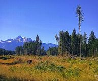 Mountain meadow. Mountains in a country meadow stock image