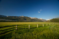 Mountain Meadow in northern Wyoming Stock Photos