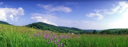 Mountain meadow panorama Royalty Free Stock Photos