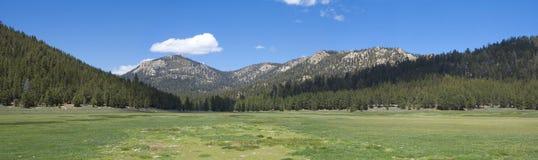 Mountain meadow panoramic Stock Photo