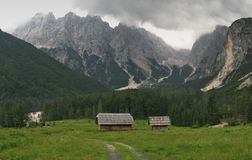 Mountain meadow in Pisnica valley in Julian Alps Stock Photo