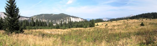 Mountain meadow in Rax Alps Royalty Free Stock Images