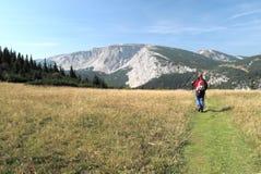 Mountain meadow in Rax Alps Stock Image