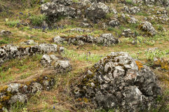 Mountain meadow with rocks Royalty Free Stock Image