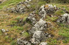 Mountain meadow with rocks Royalty Free Stock Photo