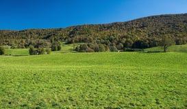 Mountain Meadow and Sinking Creek Mountain Virginia, USA - 3 royalty free stock image