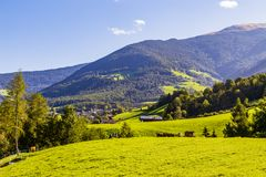 Mountain with meadow in south tyrol royalty free stock image