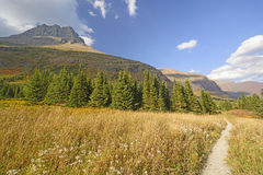 Mountain Meadow on a Sunny Fall Day Stock Photography