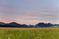 Mountain meadow at sunset in Glacier Park, Montana royalty free stock photography