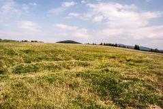 Mountain meadow with trees and hills on the background and blue sky with clouds. Svorad above Prosiecka dolina valley in Chocske vrchy mountains in Slovakia stock photo