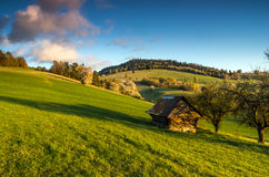 Mountain meadow. View of mountain meadow in the heart of Europe, Povraznik (Slovakia Stock Image