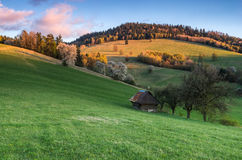 Mountain meadow. View of mountain meadow in the heart of Europe, Povraznik (Slovakia Royalty Free Stock Photo