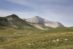 Mountain meadows royalty free stock photos