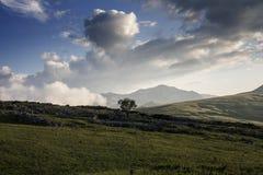 Mountain meadows stock photography