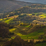 Mountain meadows at autumn illuminated by devine light, Radocelo mountain Stock Images
