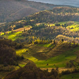 Mountain meadows at autumn illuminated by devine light, Radocelo mountain. Central Serbia Stock Images