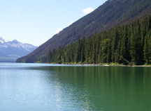 Mountain meets Lake. Tree covered mountain side converges with lake in British Columbia Rocky Mountain Range Stock Photos
