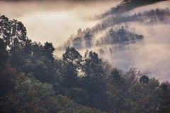 Mountain mist background royalty free stock image