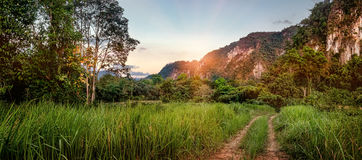 Mountain and mist at Khao-sok Suratthani, Thailand. Beautiful evening landscape in sunset time, path in the cloud field, forest and mountains at Khao Sok Stock Photo