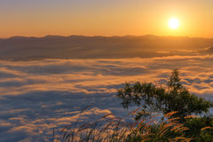 Mountain and mist in morning Royalty Free Stock Photography