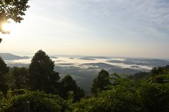 Mountain mist in the morning royalty free stock photo