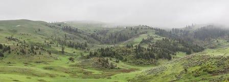 Mountain on a misty day Stock Photos