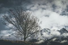 Mountain moody landscape - springtime. Mood - desaturated style image Royalty Free Stock Images