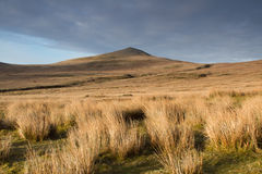 Mountain moorland. Royalty Free Stock Photography