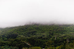 Mountain and morning fog in Seychelles, Victoria city, Mahe island Royalty Free Stock Image