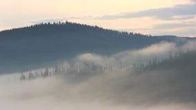 Mountain morning before sunrise. Fog moving stock video