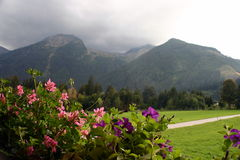 Mountain Mountain Bike Trek. In Austria Royalty Free Stock Photography