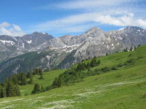 Mountain named Schlauchhorn and green meadow Stock Images