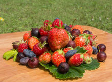 Mountain natural fresh vitamins Stock Images