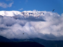 Mountain. Nature on the background of blue sky steppes and mountains Royalty Free Stock Photo