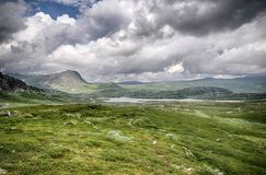 Mountain nature landscape in Morway summer Stock Photography