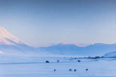 Mountain nature Svalbard Longyearbyen Svalbard Norway with blue sky sunny day wallpaper during sunset Stock Images