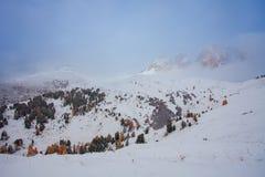 Mountain near Campitello di fassa, Dolomites, Italy Stock Images